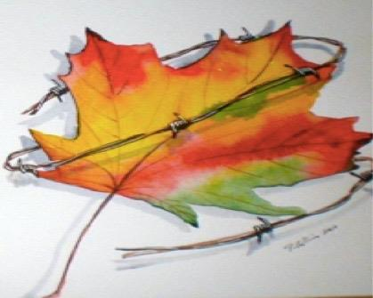 maple leaf wrapped in barbed wire