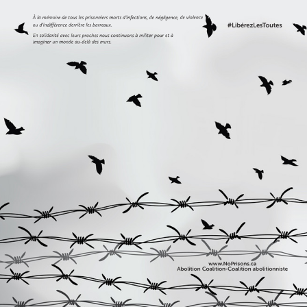 birds and barbed wire cartoon